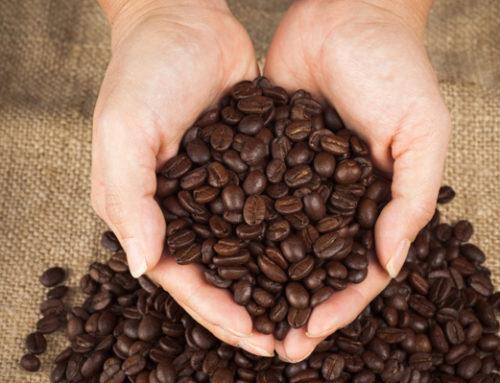 De juiste kwaliteit koffiebonen