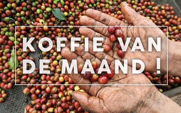 Koffie van de maand